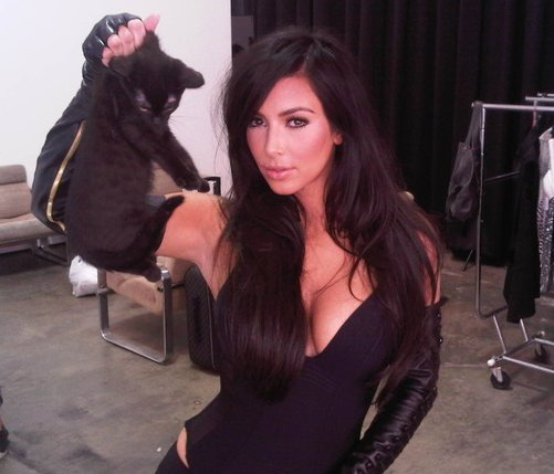 Kim Kardashian Cat Photoshoot