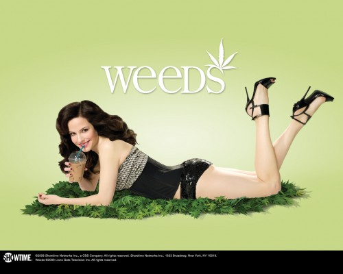 Weeds - Mary Louise Parker