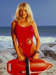 Donna DErrico Baywatch