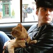 Ian Somerhalder Cat