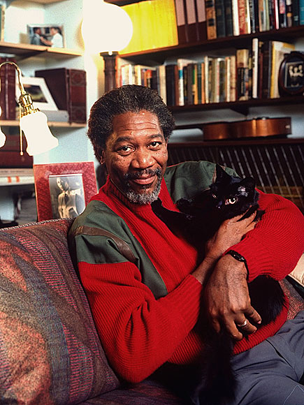 Morgan Freeman Cat