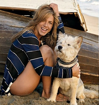 Jennifer Aniston Dog