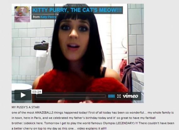 Katy Perry blog