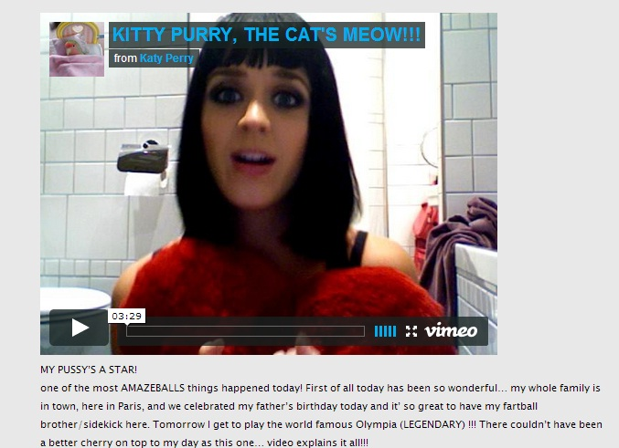 Featured image for Katy Perry blog